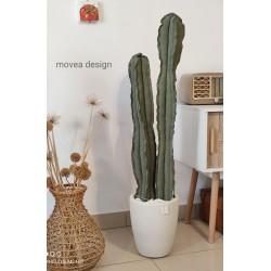 Cactus duetto in tessuto