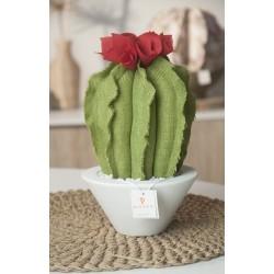 Cactus lungo in tessuto