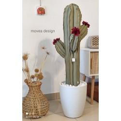 Cactus grande in tessuto